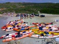 Kayaks en tierra