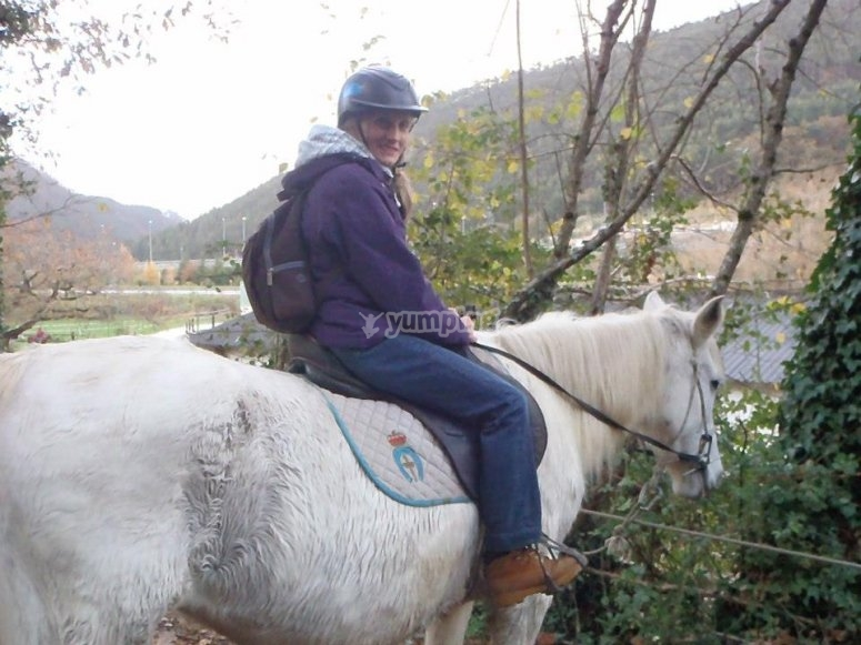On the back of the horse across the dirt road