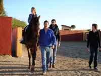 Horse riding with adults