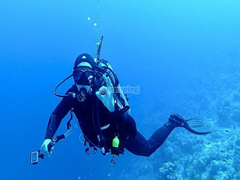 Open Water Diver PADI en Altea