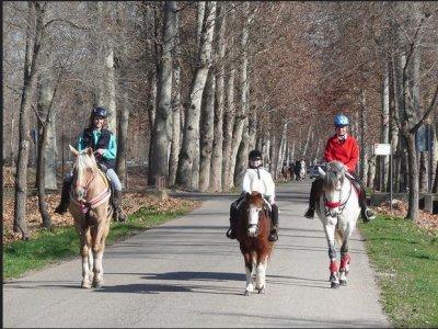 马游览更多参观阿尔罕布拉宫