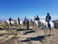 通过格拉纳达骑马游览,2小时