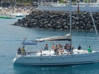 excursion velero ballenas-delfines