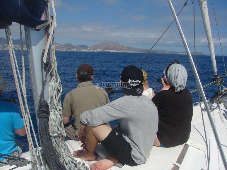 Luxury sailboat trip