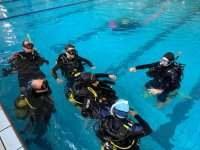 Pool diving exercises