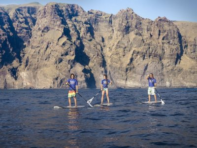 Paddle Surf in Los Gigantes, Tenerife - 2h