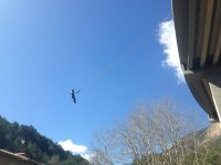 Bungee jumping in Catalonia