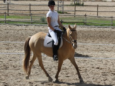 Horse riding lesson in Alcorcón