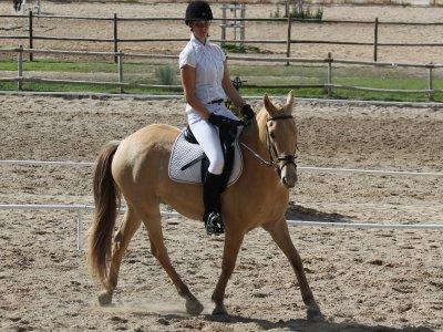 1 ora di lezione di equitazione ad Alcorcón