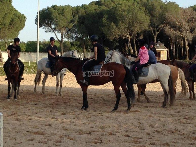 在马场上骑马