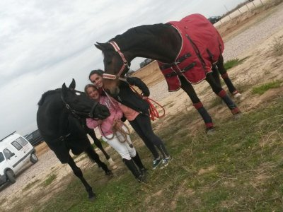 50 min pony ride tour in Alcorcón