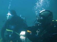dos buceadores bajo del mar