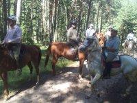 Equitazione in montagna