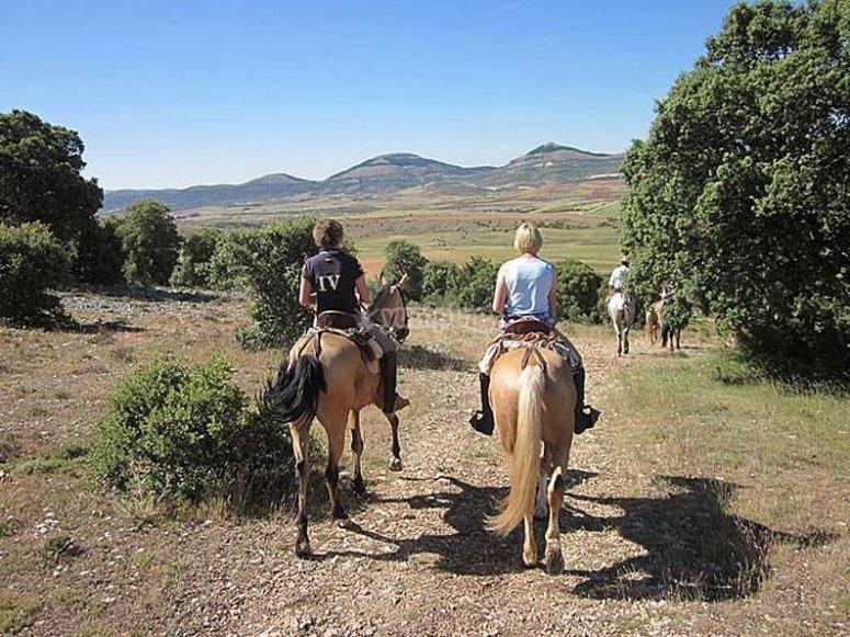 Ruta a caballo en la sierra