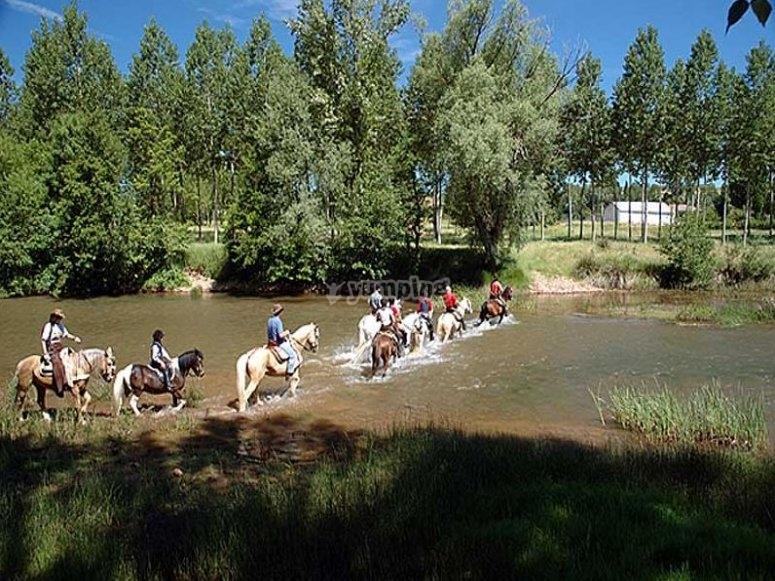 Cruza el río a caballo