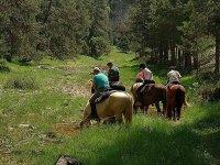 Paquete con alojamiento y rutas a caballo