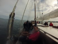 Comfortable on board