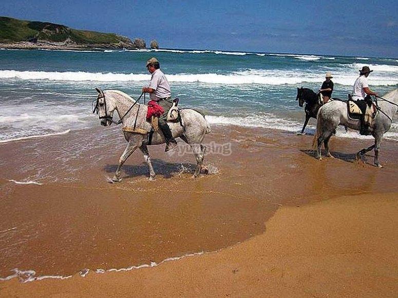 Disfruta corriendo por la playa a caballo