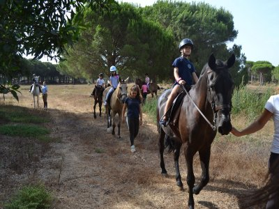 1-hour Pinewood Horse Riding Tour Chiclana