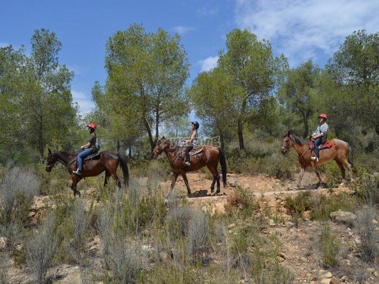 Enjoying the horse ride tour in Valencia