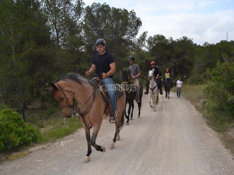 Horse ride tour in Valencia