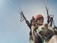 Paragliding with your dog