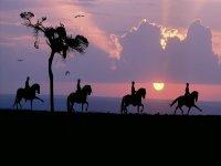 Night route on horseback