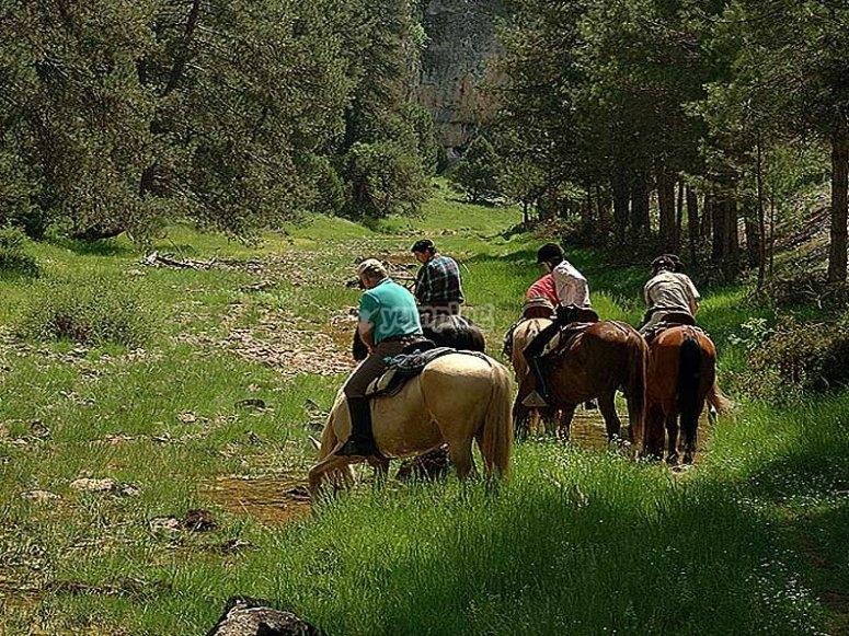 Ruta en la naturaleza a caballo
