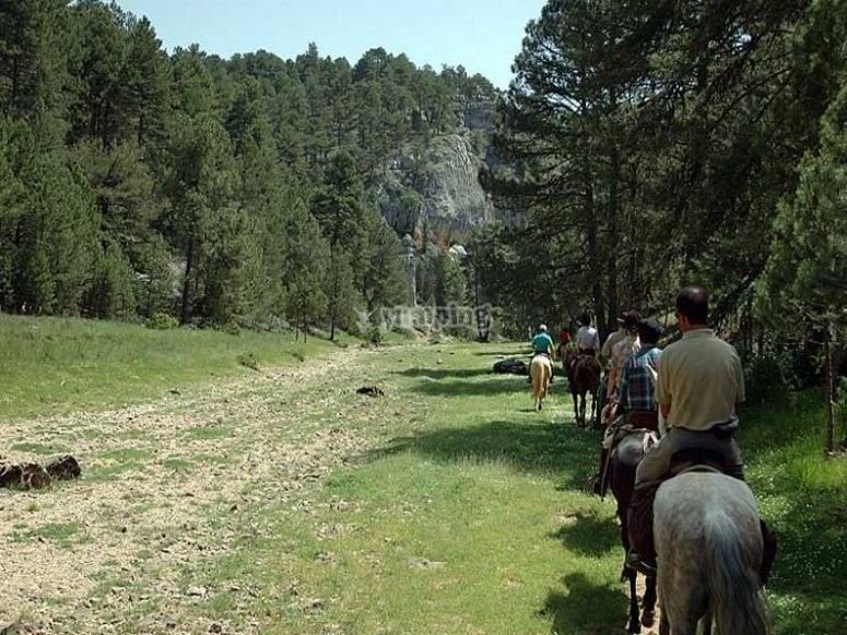 Excursión a caballo de una semana