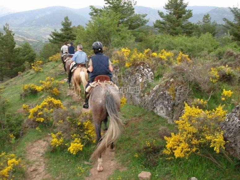 A caballo en la naturaleza