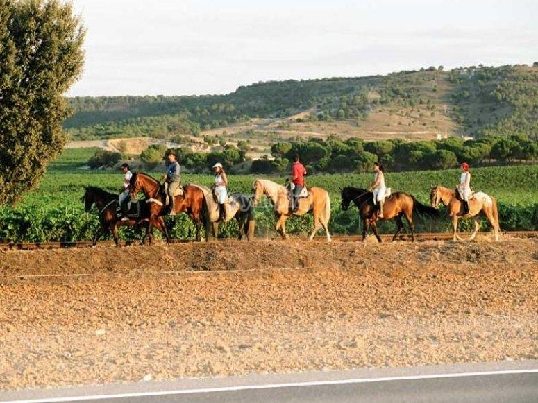Recorrido a caballo hacia la Ribera del Duero