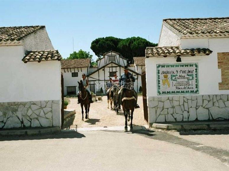Una ruta enológica a caballo