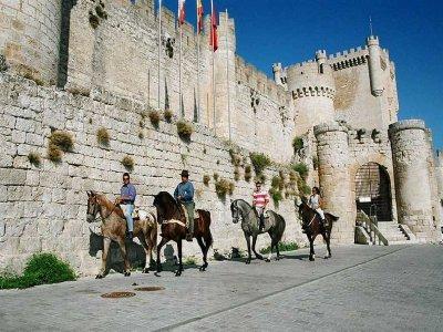 Ruta del Vino a caballo, La Ribera de Duero