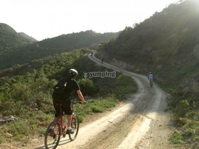 山地自行车BTT集团