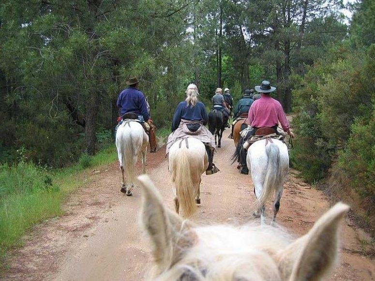 Recorrido a caballo en Gredos