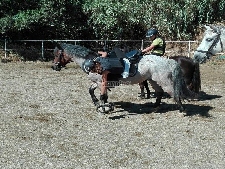 Clase de Horseball
