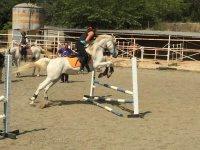 Horse riding, 10 lesson voucher, in Òrrius
