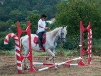 Aprendiendo a saltar la valla