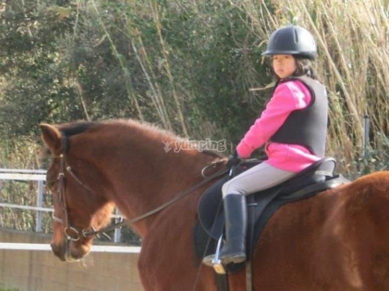 Horse ride course