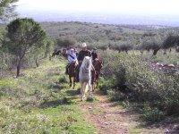 Paseo a caballo por los alrededores de Don Benito