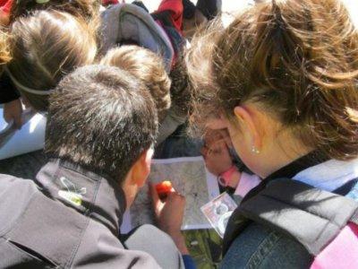 学龄前儿童的在线定向课程