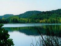 pantano paque natural de las lagunas de ruidera