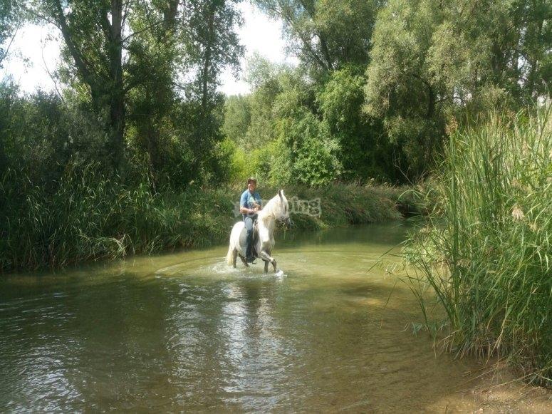 Disfrutando del río a caballo