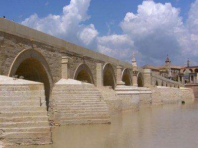 Visita guiada para colegios en Córdoba