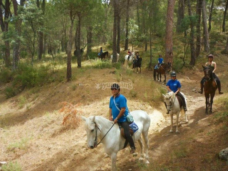 Realizando un paseo a caballo