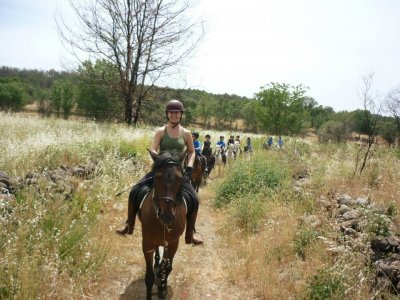2h horse riding route and Castillo de Adrada visit