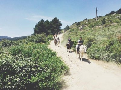 1h horse Ride Tour in Sierra de Guadarrama