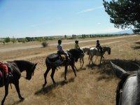 Con los caballos por paisajes segovianos