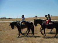 Refresando a la finca con los caballos