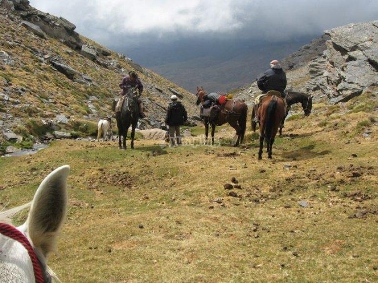 Paseo a caballo las encinas